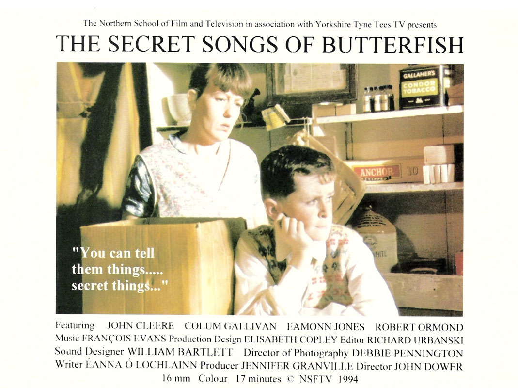 The Secret Songs of Butterfish - Original flyer/poster